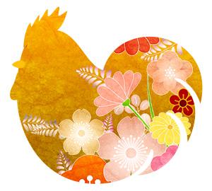 bird_21_3_sn